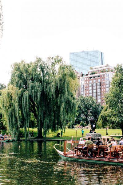 What to see: Boston Public Garden | The Stopover