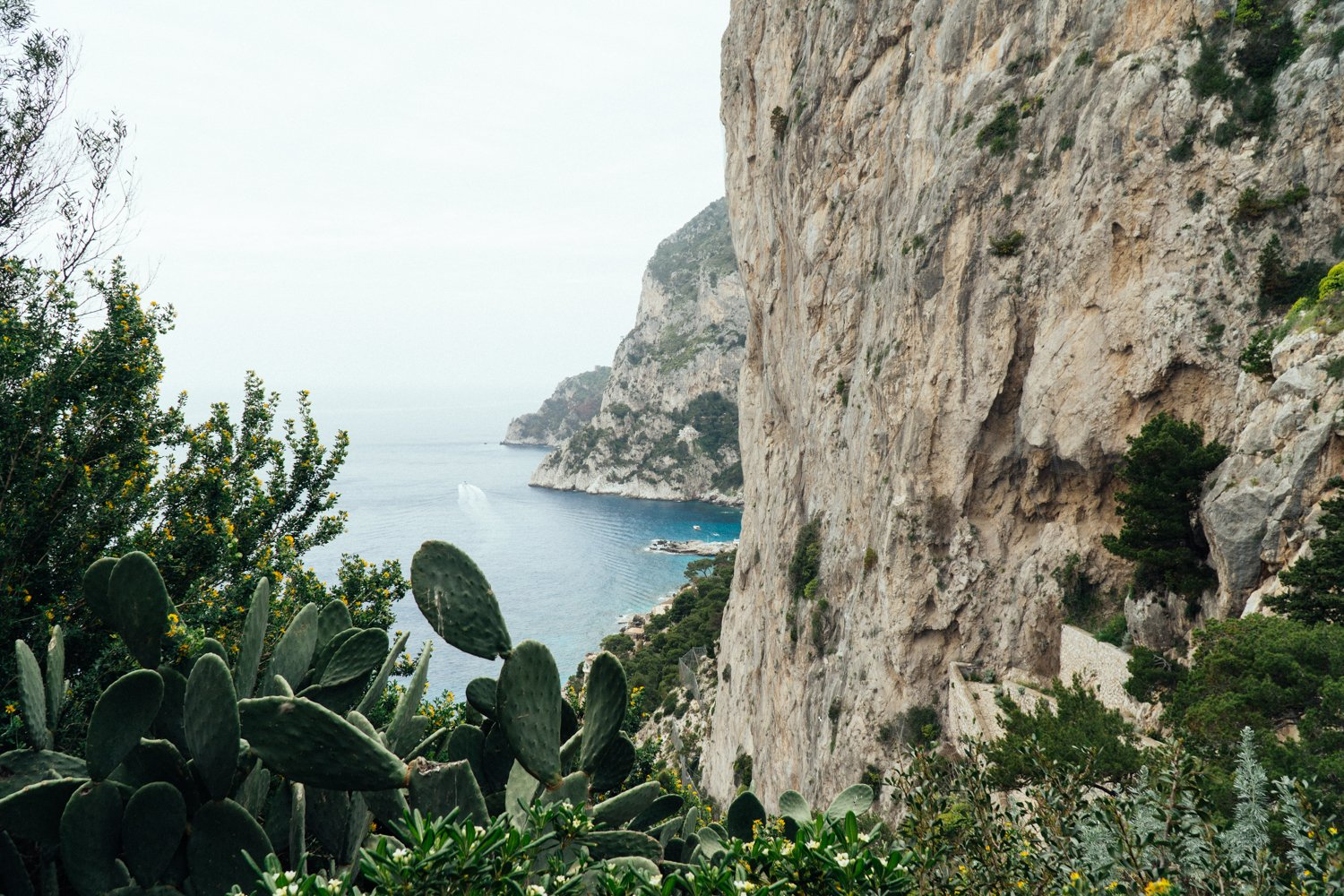 An image of Capri, Italy by travel blogger Meaghan Murray of The Stopover