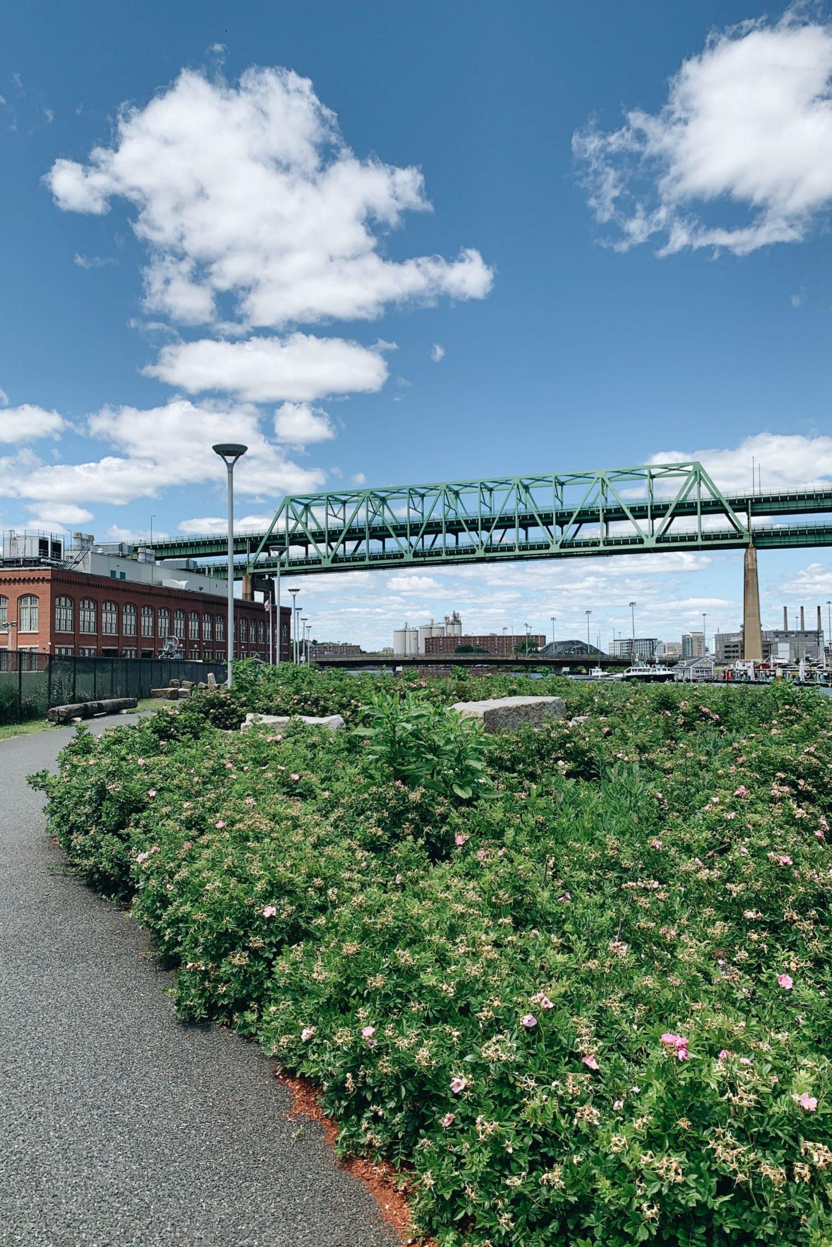 Tobin Bridge from Charlestown