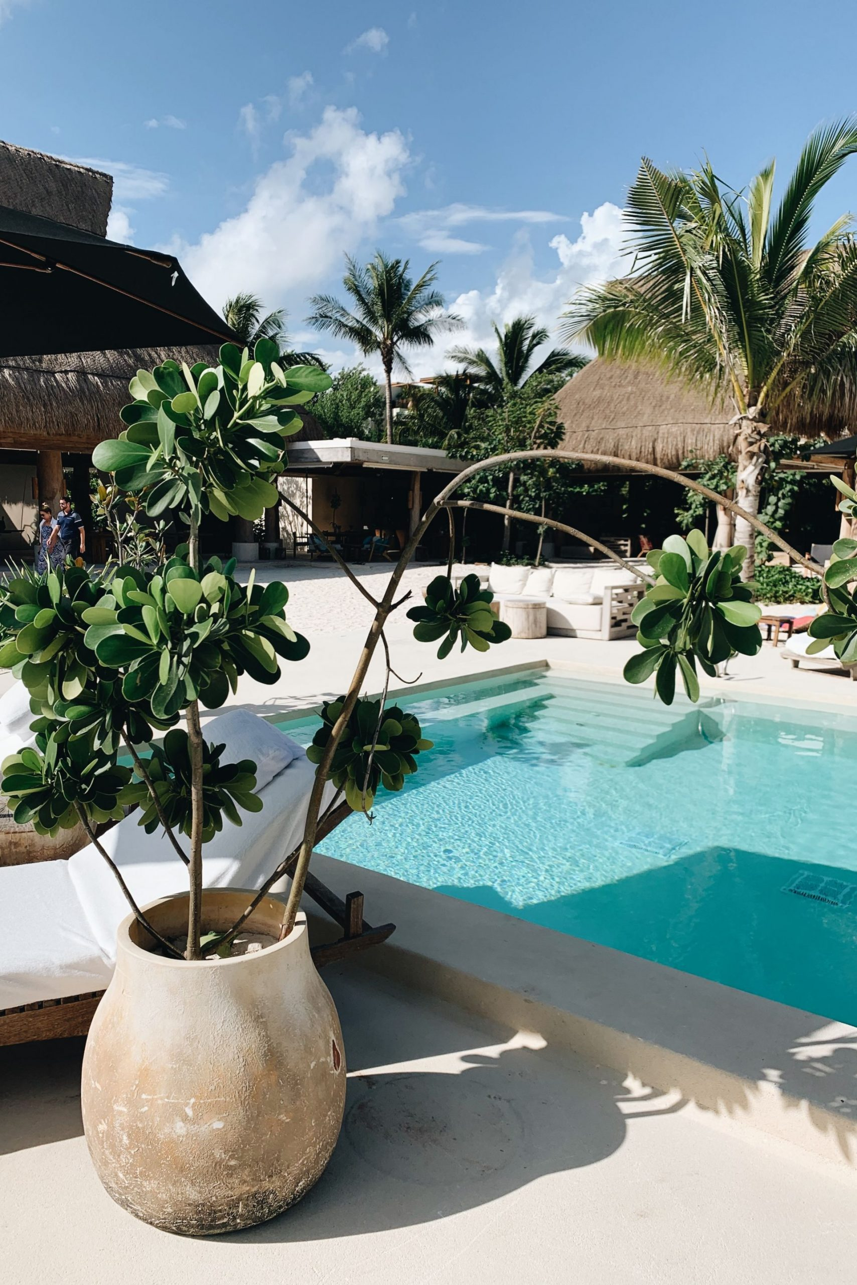 Rosewood Mayakoba pool